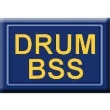 Drum BSS